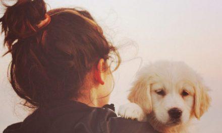 5 bienfaits santé d'avoir un animal de compagnie